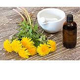 Dandelion, Nature Medicine