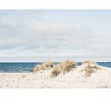 Beach, Sea
