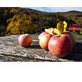 Apple, Autumn Apple