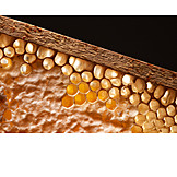 Honeycomb, Wooden frames