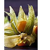 Fruit, Physalis