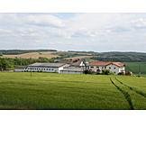 Landwirtschaft, Bauernhof, Getreidefeld