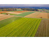Field, Agriculture, Farmland