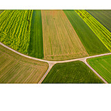 Feld, Landwirtschaft, Feldweg, Nutzfläche