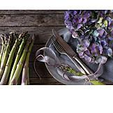 Still Life, Asparagus, Green Asparagus