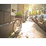 Bicycle, Ecological, Urban Gardening