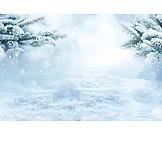 Snow, Lamps, Fir Branch, Winterly