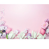 Frame, Flowers, Pastel Colors