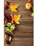 Autumn, Leaves, Fruit