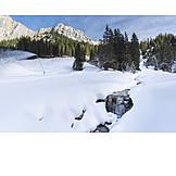 Stream, Winter, Frozen