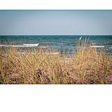 Strand, Meer, Dünengras