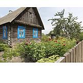 Garten, Holzhaus, Blumenbeet