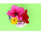 Flowers, Vase