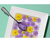 Flowers, Edible