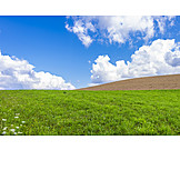 Meadow, Arable, Clouds