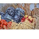 Grain, Fruit, Vegetable