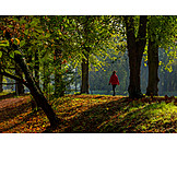 Park, Autumn, Walk