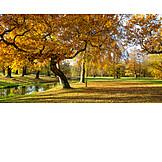 Park, Herbst