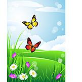 Schmetterling, Blumenwiese, Frühling