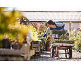 Gärtnerei, Kundin, Aussuchen