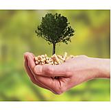 Umweltfreundlich, Brennstoff, Holzpellet