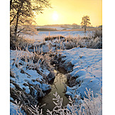 Winter Landscape, Riverside Meadows