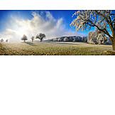 Winter Landscape, Fruit Trees