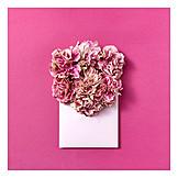 Blumen, Valentinstag, Liebesbrief