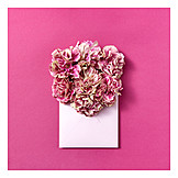Flowers, Valentine, Love Letter
