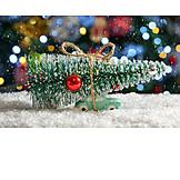 Christmas Tree, Transportation