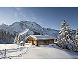 Snowy, Mountain lodge, Alp