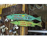Fish, Fishing Industry, Fish Sales
