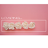Rose, Wedding, Loading