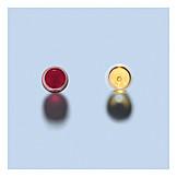Wine, Wine Glass, Red Wine, White Wine