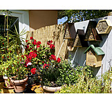 Garden, Balcony, Potted Plants, Patio, Birdhouse, Insect Hotel
