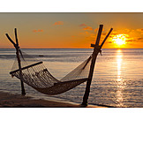 Sunset, Beach, Hammock