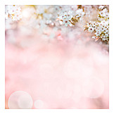 Backgrounds, Mothers day, Greeting card
