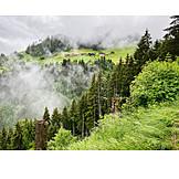 Fog, Weather, Mountains