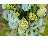 Bouquet, Flowers, Flower Arrangement