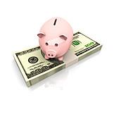 Savings, Savings, Dollar