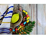 Religion, Judentum, Sukkot
