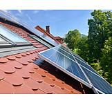 Solar Plant, Solar Energy, Solar Roof