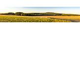 Meadow, Arable, Autumn