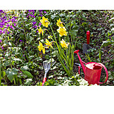 Garden, Gardening, Garden tool