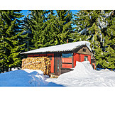 Forest, Winter, Cabin