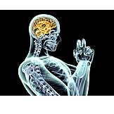 Research, Motion, Brain, Neurology
