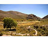 Landscape, Province Of Jujuy