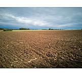 Arable, Agriculture, Farmland