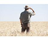 Agriculture, Wheat Field, Farmer
