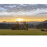 Sunrise, Meadow, Pasture, Upper Bavaria